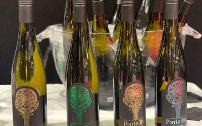 Ponte Dio на Форум на българското вино